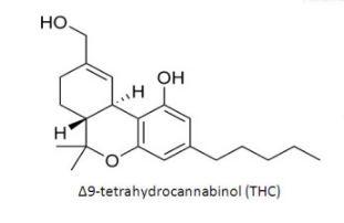 THC Formulation