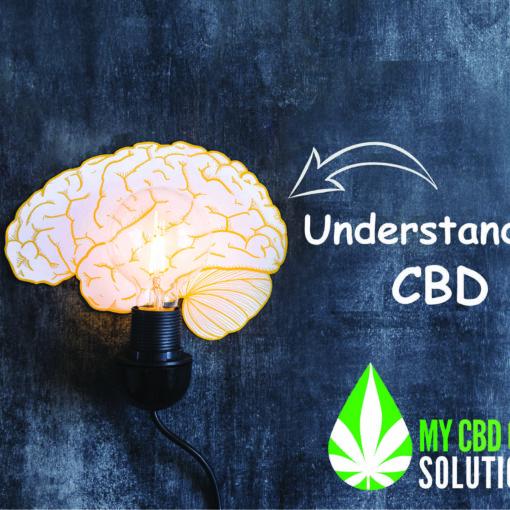 Illuminated Brain Understanding CBD
