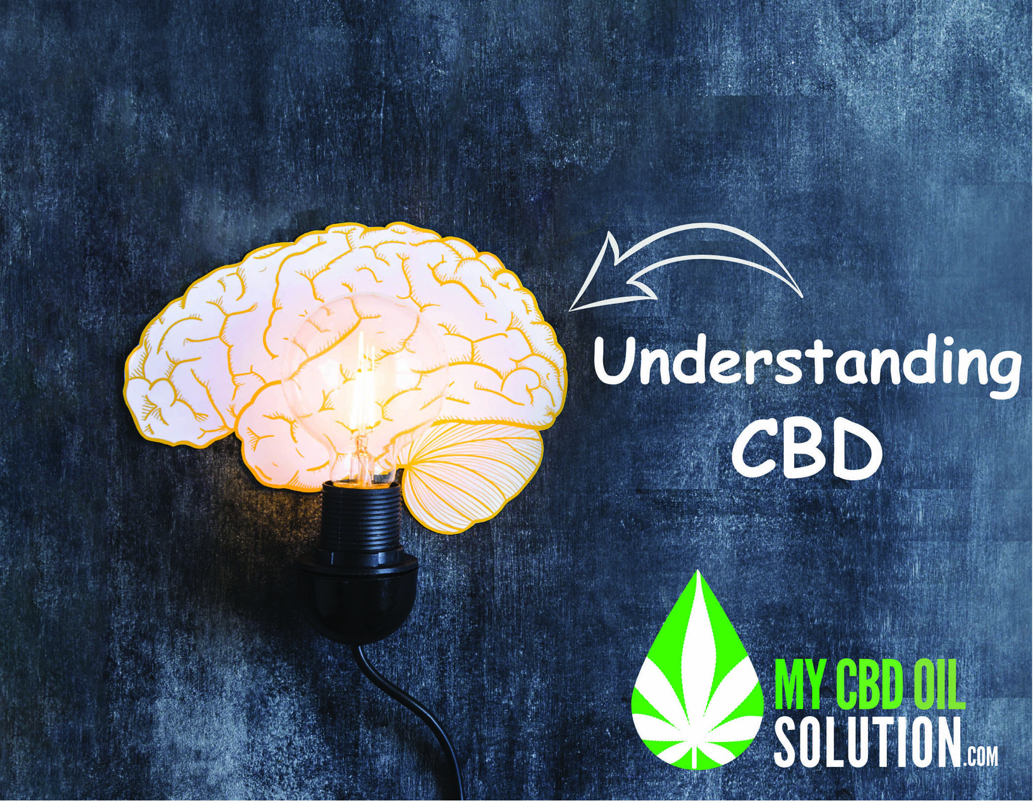 Illuminated Brain Understanding CBD